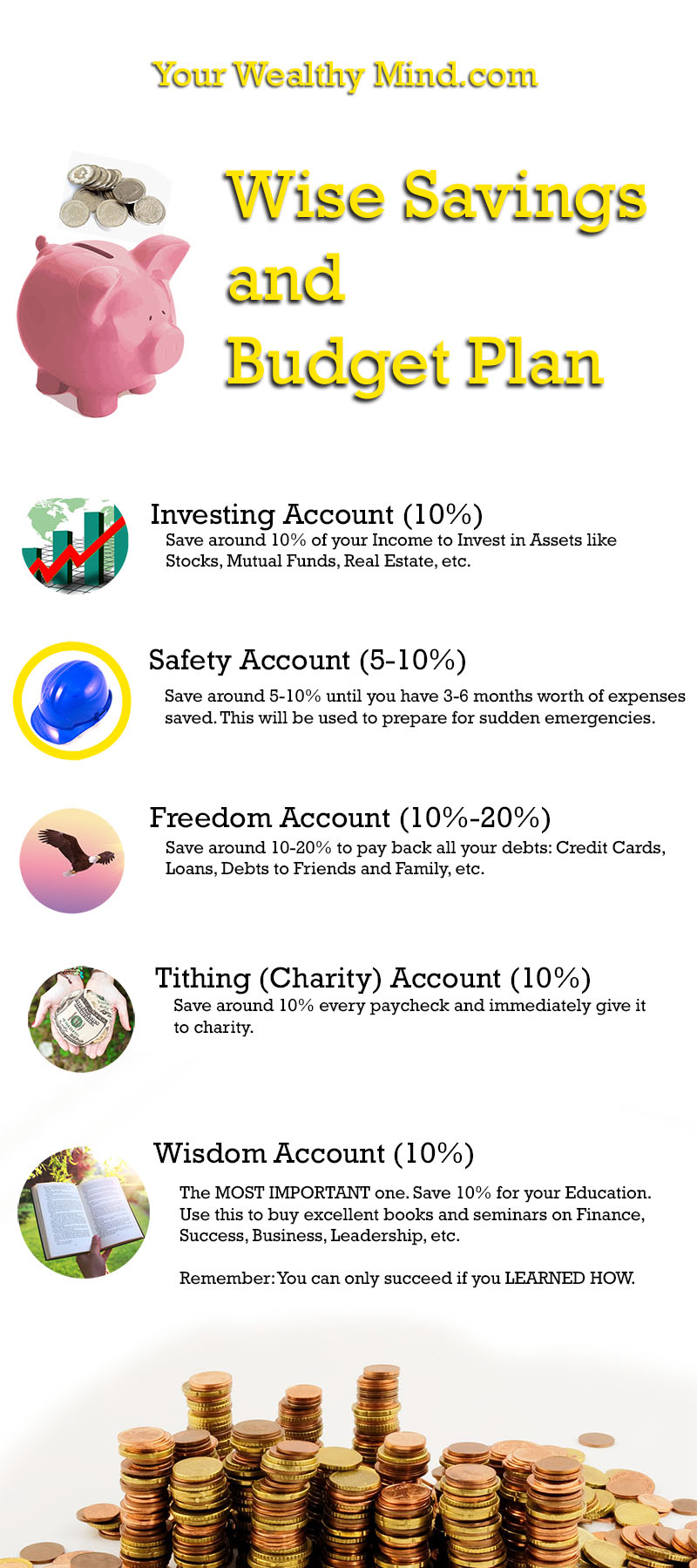 Your Wealthy Mind Savings and Budget Plan Infographic